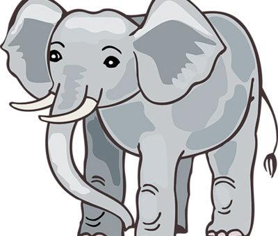 Слон как нарисовать
