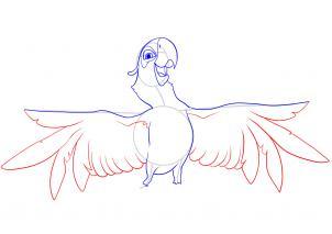 Голубчик попугай из Рио