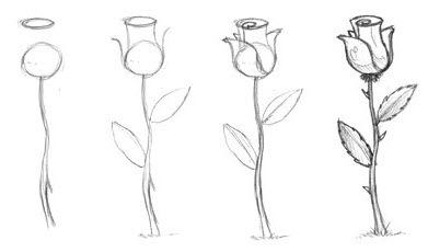 Рисовать карандашом розу