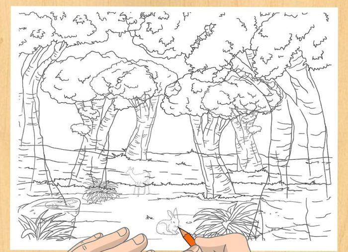 Как нарисовать Лес