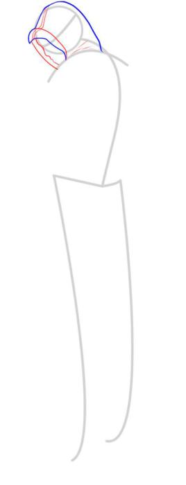 как нарисовать Альтаира 3