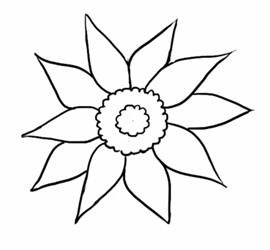 Как нарисовать подсолнух2