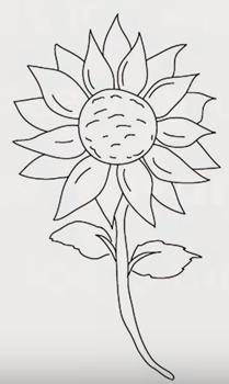 Как нарисовать подсолнух9