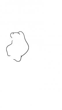 Как нарисовать осла из шрека1
