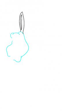 Как нарисовать осла из шрека2