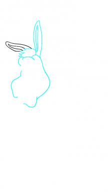 Как нарисовать осла из шрека4