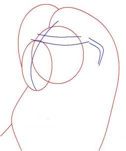 Как нарисовать Симбу 102