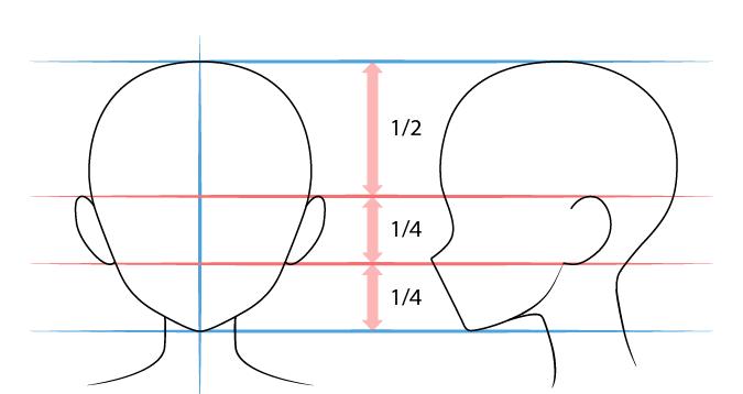 рисуем аниме уши