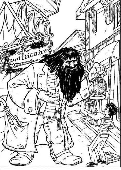 Раскраска Гарри Поттер 15